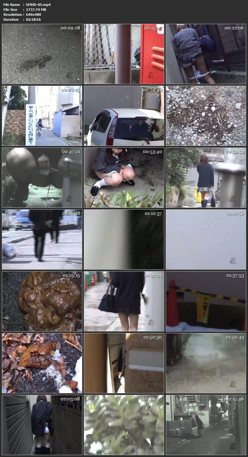 [SMHD-05] 過激隠撮SP 街中の放尿・脱糞女子校生 7 その他盗撮 Voyeur シャドウ