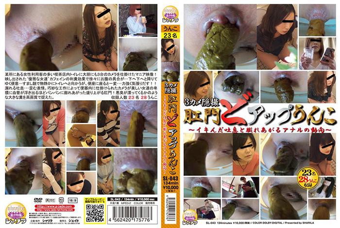 [SL-043] 3カメ隠撮 肛門どアップうんこ ~イキんだ吐息と膨れあがるアナルの動向~ 脱糞 スカトロ Defecation
